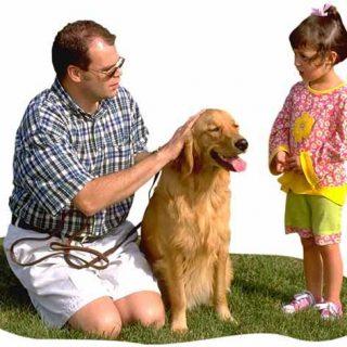 10 reglas para mejorar la convivencia de perros y niños