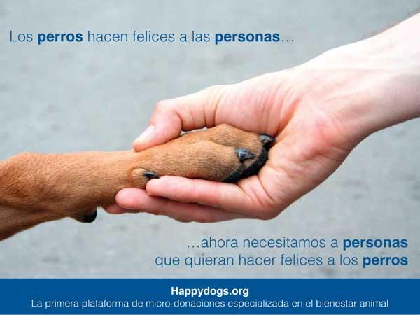 @HappyDogsorg  es la primera plataforma de micro-donaciones de España especializada en el bienestar animal