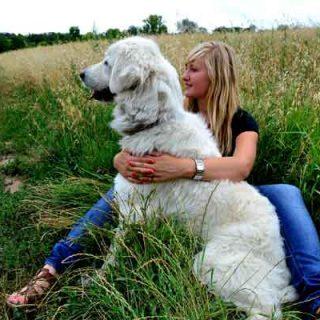 """Que los perros son el reflejo de sus familias humanas es un hecho, pero ¿cómo debería ser el dueño """"perfecto""""? Seguro que todos tenemos algo de cada uno de estas cinco tipologías de dueñ@s de perros..."""
