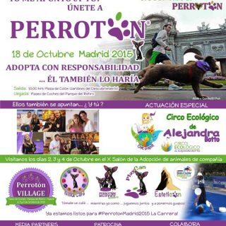 Participantes de toda España se preparan ya para la 4ª Carrera Solidaria por la Adopción y Tenencia Responsable de Animales de Compañía