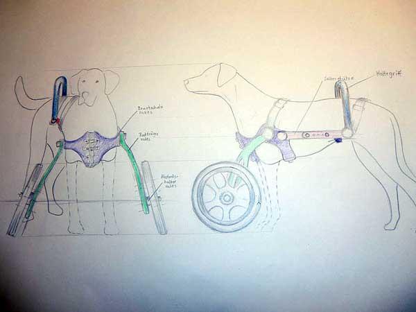 Una silla de ruedas para perros, por 130 euros