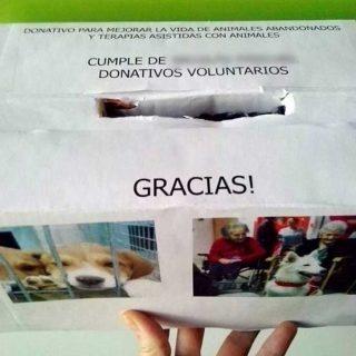 Un niño renuncia a sus regalos de cumpleaños para ayudar a los animales abandonados.