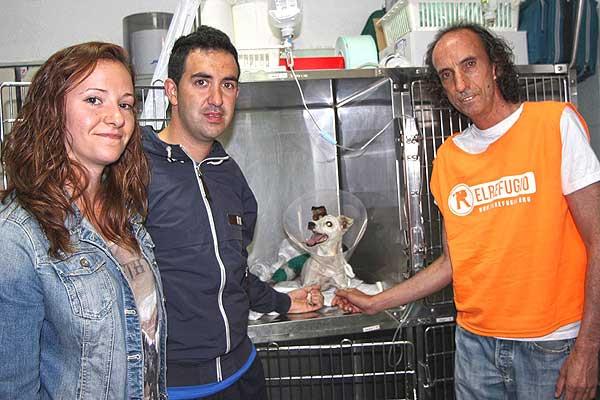 @el_refugio. Un cazador madrileño imputado por disparar supuestamente al perrito de una pareja que paseaba por el campo.