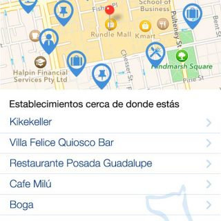 17.400 lugares que admiten mascotas en España