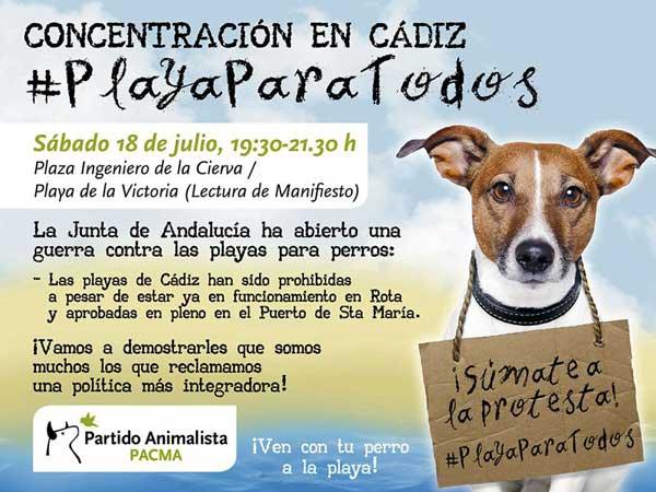 La Junta de Andalucía amenaza con multar a los Ayuntamientos que permitan perros en sus playas durante el verano.