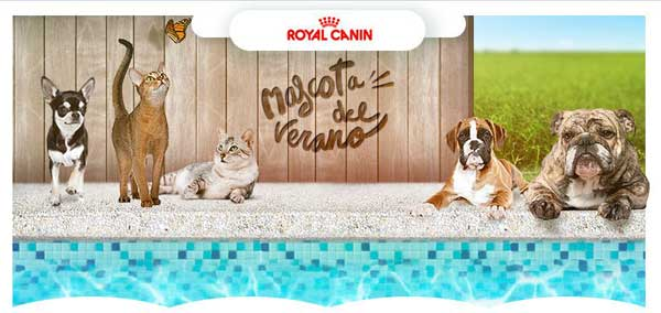 #mascotadelverano2015 Cuarta edición del concurso fotográfico Royal Canin.