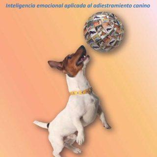 """""""Primero es la emoción y después la conducta; entre ambas se encuentra la motivación, es decir, las emociones que siente el perro producen la automotivación que desencadena la conducta"""". Antonio Paramio, en su libro """"El Adiestramiento Silencioso""""."""
