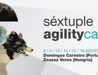 @agilitycantabri Sexta edición de la tradicional prueba de agility del puente de agosto en Cantabria.