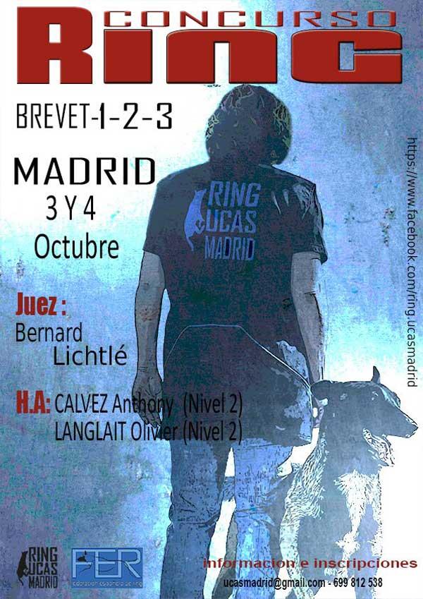 Concurso de Ring Francés, próximo mes de octubre en Madrid.