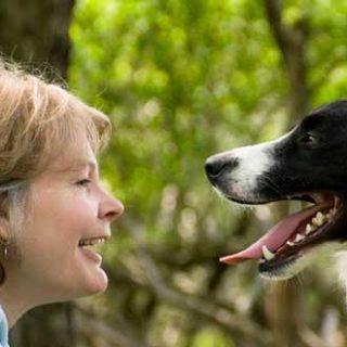 """Presentación del libro de Patricia McConnell: """"El amor no tiene de edad. Guía para adoptantes perros de adolescentes y adultos""""."""