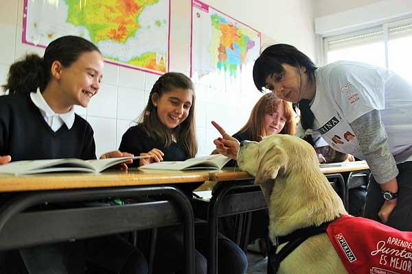 """Bajo el lema """"Aprender Juntos es Mejor"""" PURINA, en colaboración con CTAC, organiza diversas jornadas de educación asistida con #perros para mostrar sus beneficios en el aprendizaje de los niños."""