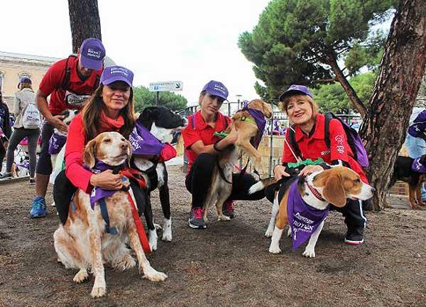 Más de 3.000 perros y sus familias corren por el centro de Madrid en la 4ª edición de Perrotón