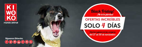 Llega el #BlackFriday perruno: Revisiones veterinarias gratuitas.