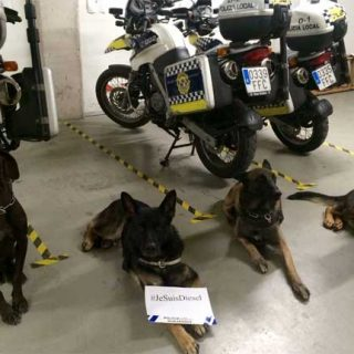 #JeSuisDiesel, Unidades Caninas de España