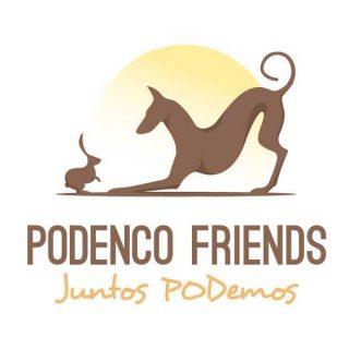 Podenco Friends