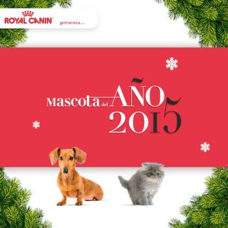 #mascotadelaño2015 Royal Canin organiza por segundo año consecutivo el concurso fotográfico Mascota del Año.