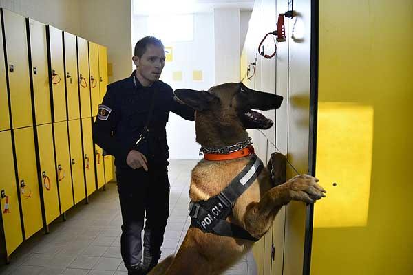 La Policía Local de Benicarló se alza con el primer puesto en el Campeonato de perros detectores de sustancias de la UCAN de Vila-real.