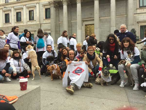 600 #perros vuelven a tomar las calles de Madrid por quinto año consecutivo en la #Sanperrestre.