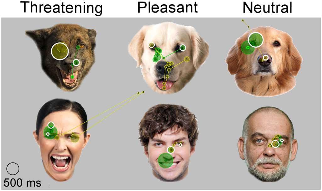 Emocines-humanos-perros