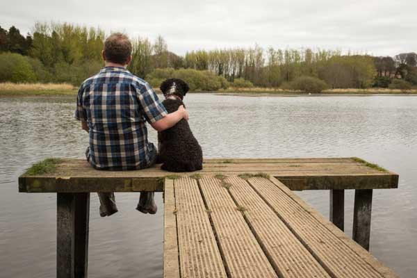 Loa 10 hábitos de los dueños de #perros equilibrados (y 2 leyendas urbanas que no son verdad).