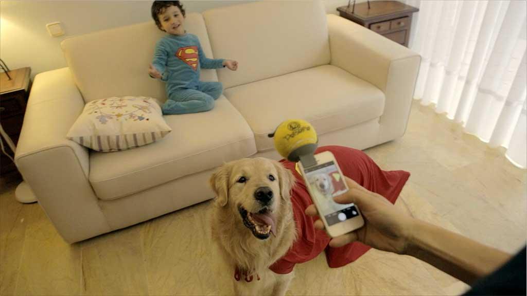 Pet selfie, un gadget perruno muy práctico