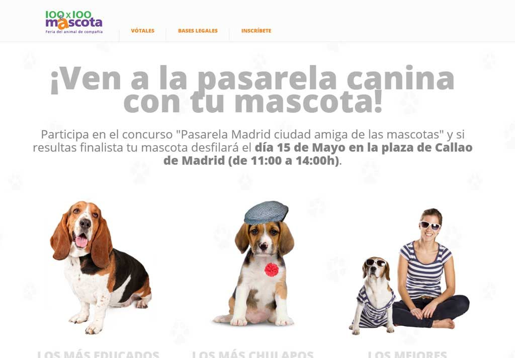 pasarela 'Madrid, ciudad amiga de las mascotas'.