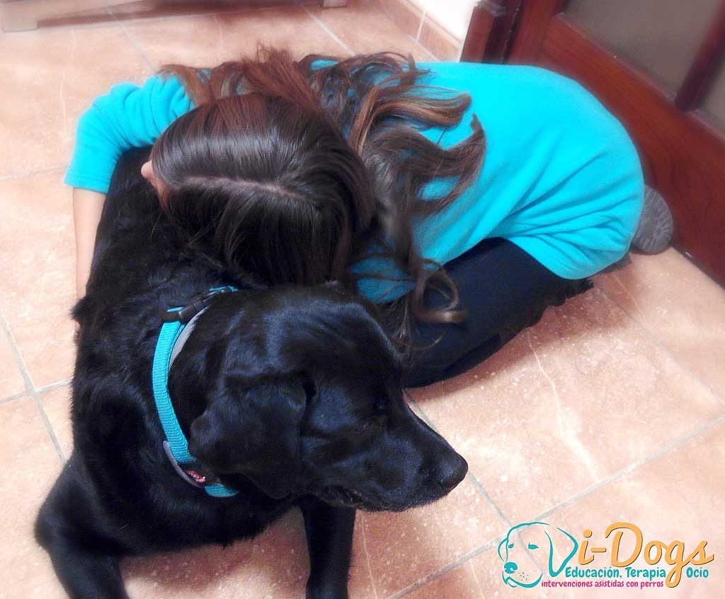Perro-terapia-menores1