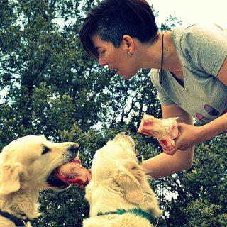 ¿Puede ser vegetariano un perro?