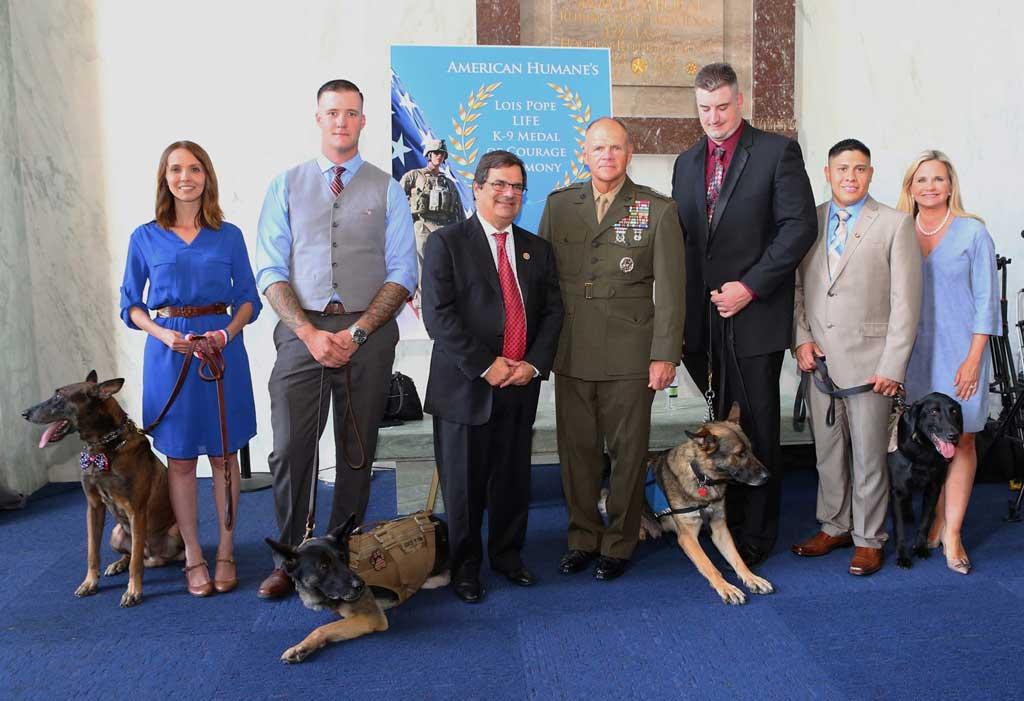 """Perros galardonados con la """"Medalla al Valor"""""""