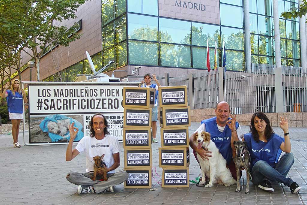 La ley que aprobará el #sacrificiozero de perros y gatos abandonados entra de pleno en la Asamblea de Madrid.