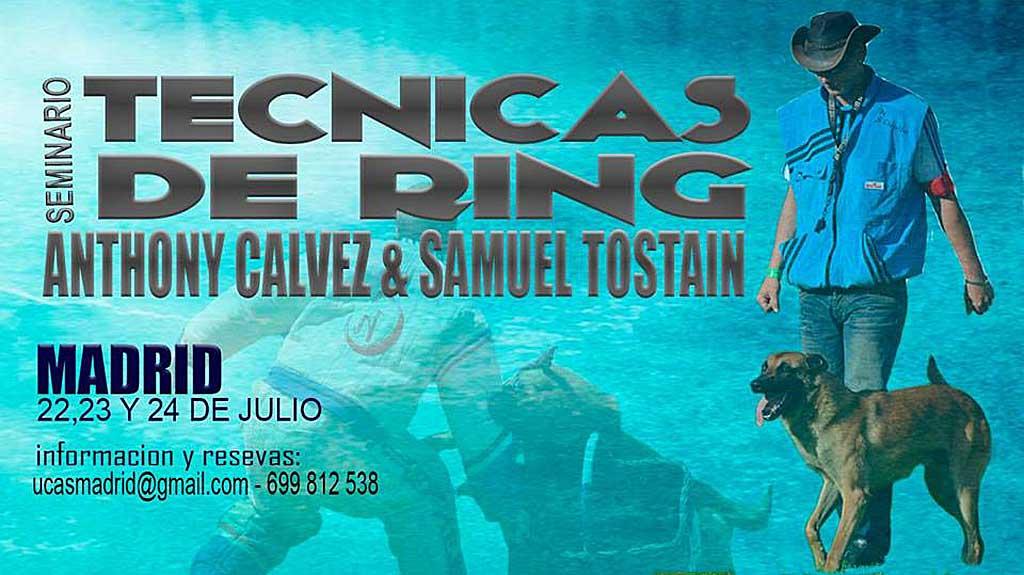 Los próximos días 22, 23 y 24 de julio tendrá lugar en Madrid el primer seminario de Técnicas de Ring organizado por el club Ring UCAS Madrid.