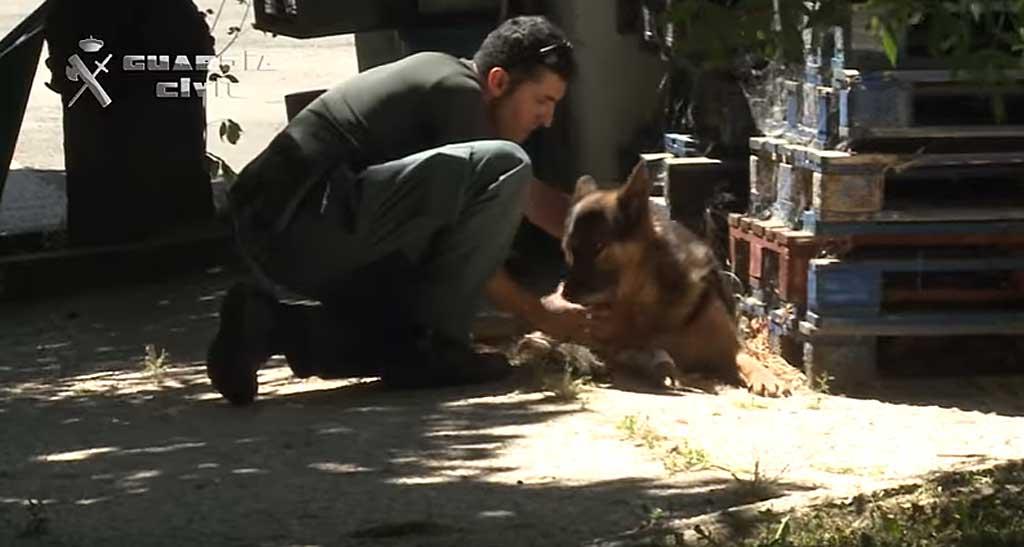 La Guardia Civil presenta la campaña contra el maltrato y abandono de animales domésticos #YoSiPuedoContarlo