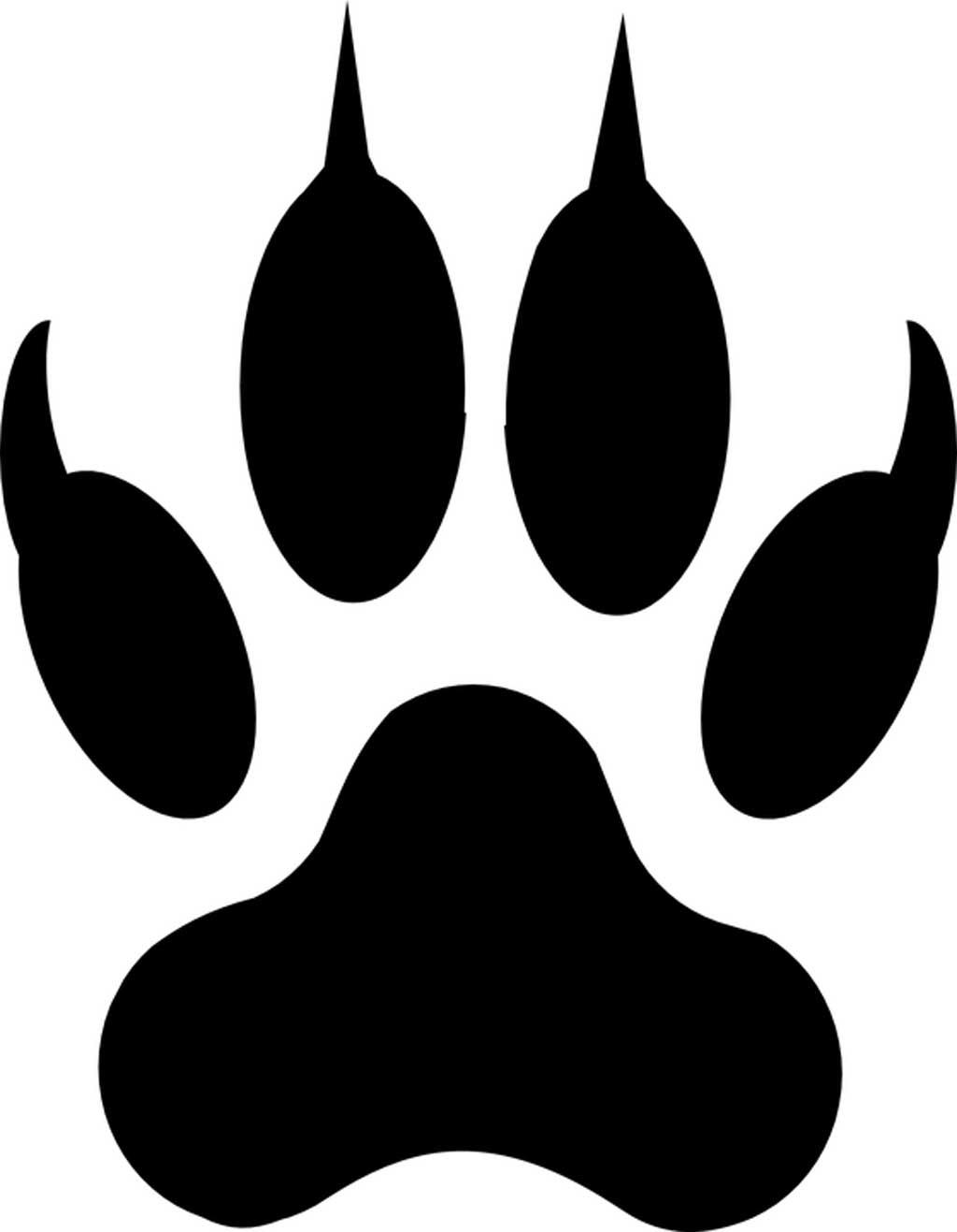 El paseo ´Huellas y Señales´ enseñará a localizar e interpretar los rastros de los animales