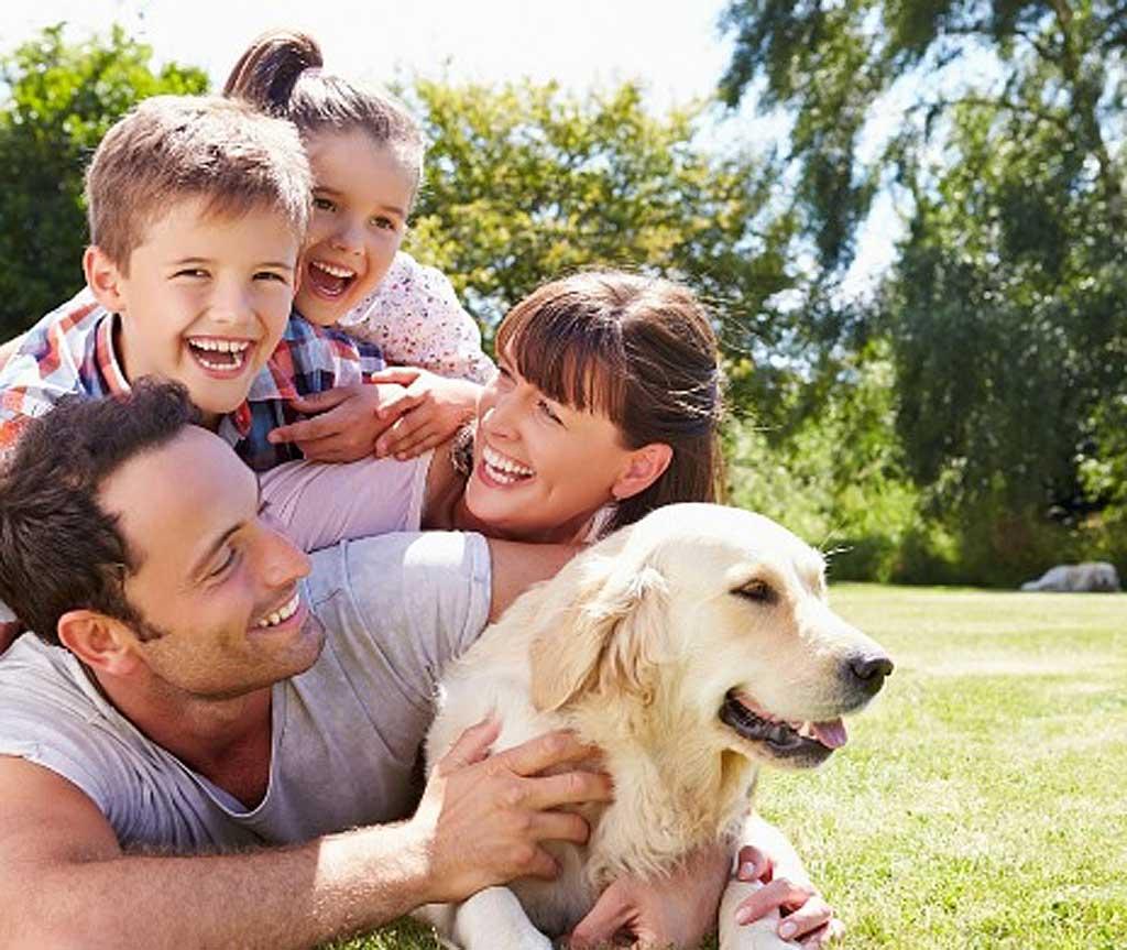 Playa, piscina, montaña o parques acuáticos, lugares ideales para visitar con tu perro estas vacaciones