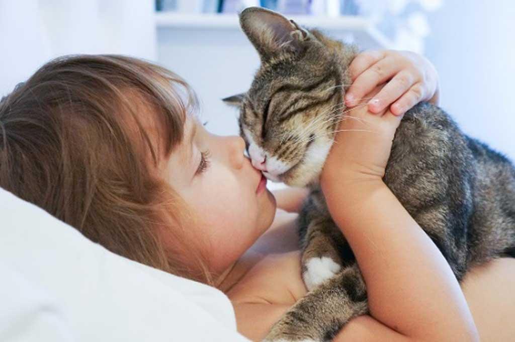 Cómo potenciar las cualidades de perros y gatos