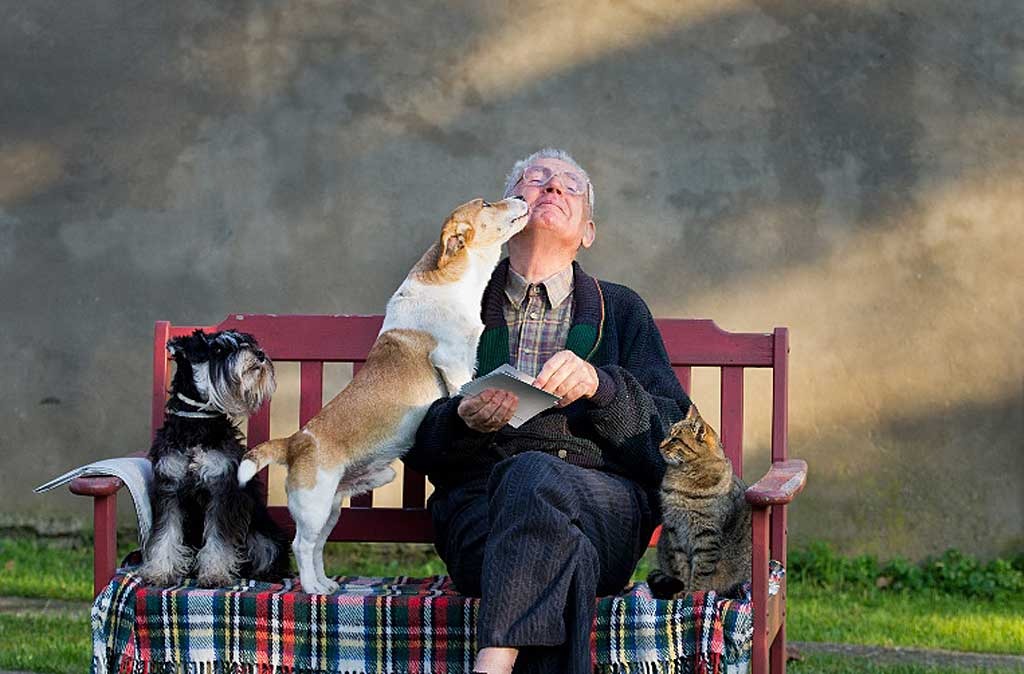 5 Beneficios de las mascotas para las personas mayores.