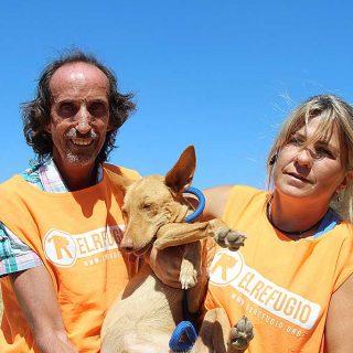El Refugio rescata tres perros utilizados para la caza en pésimas condiciones
