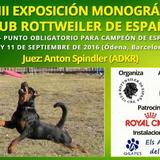 XXXIII Exposición Monográfica del Club Rottweiler de España