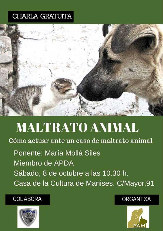 Charla gratis en Manises (Valencia) para saber cómo actuar ante un caso de maltrato animal