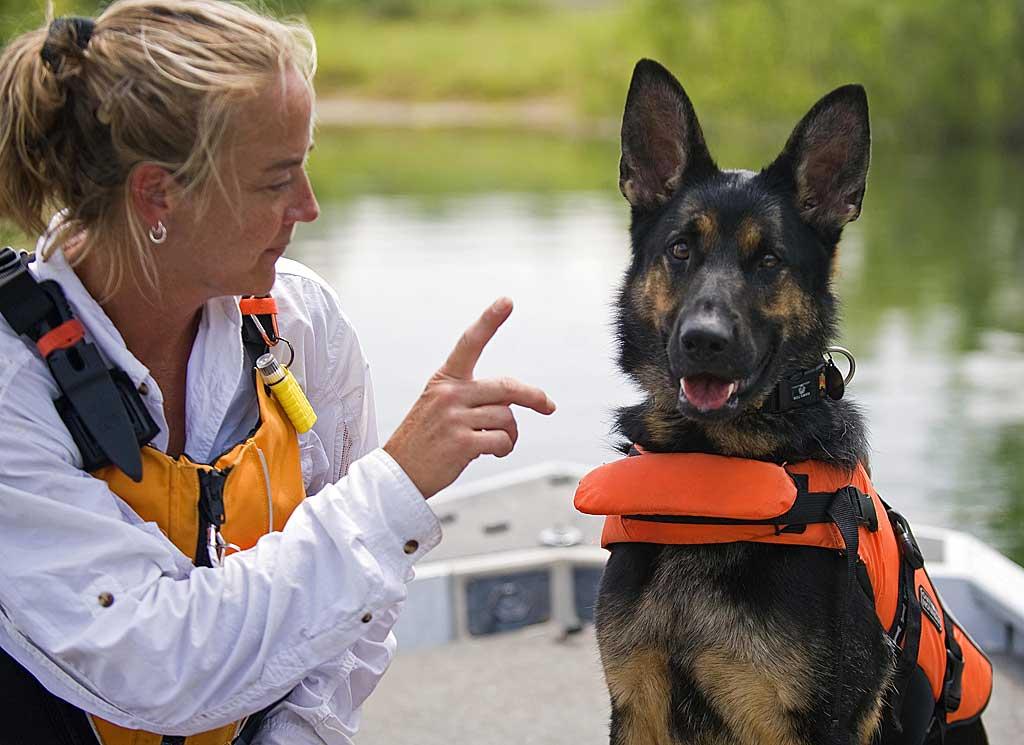 En el adiestramiento de perros lo primero es... El perro, claro.