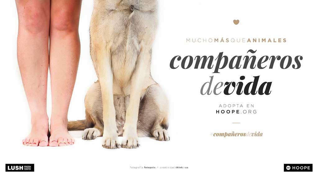 Hoope y LUSH lanzan la campaña #compañerosdevida.