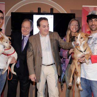 MascoMad es una app que promociona la adopción de perros.
