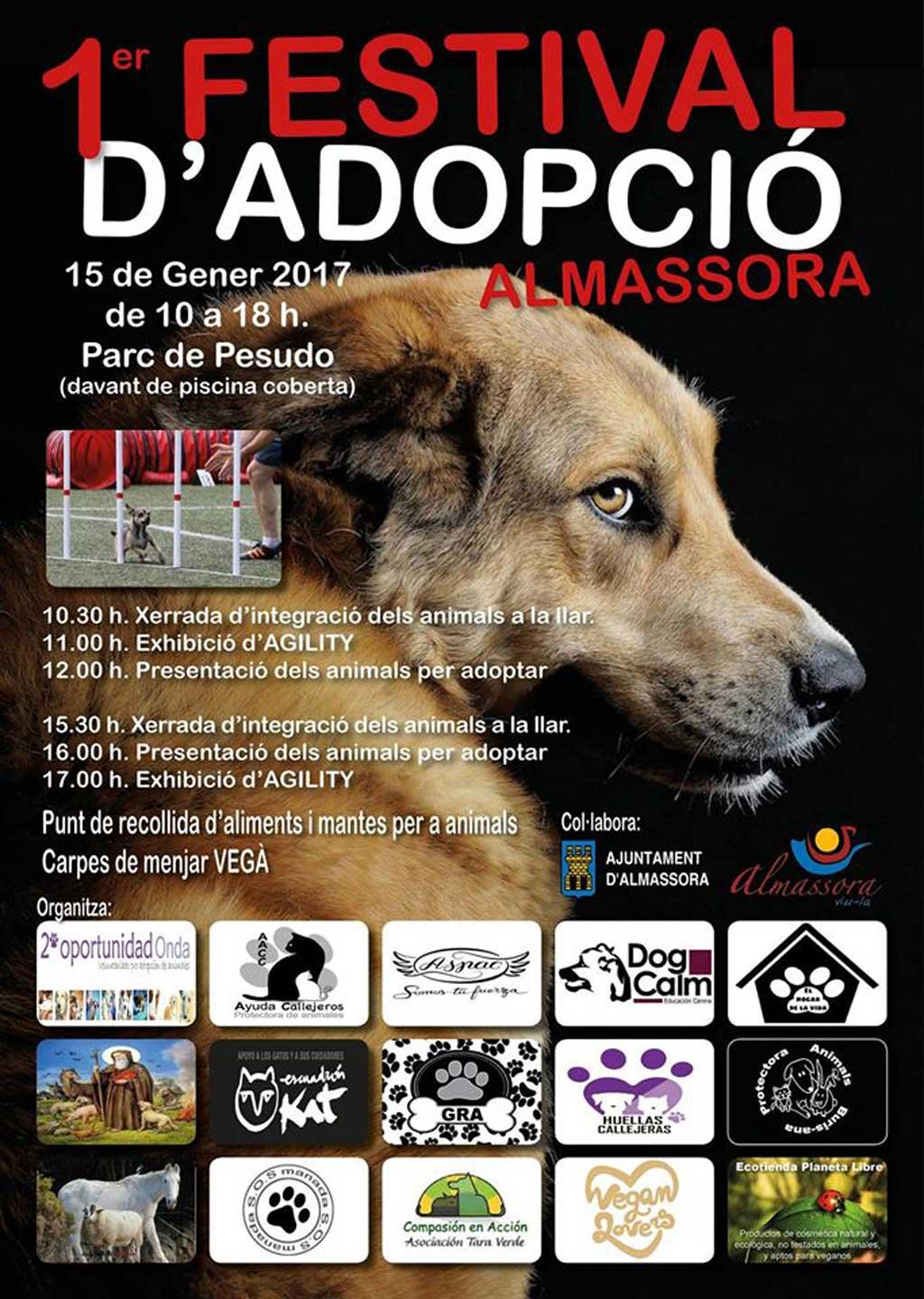 Festival de la Adopción en Almassora.