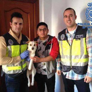 Policía Nacional detiene a una persona por dar una paliza a un perro
