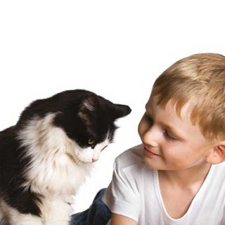 Royal Canin destaca los beneficios de la terapia asistida con animales en la vida de las personas con autismo.
