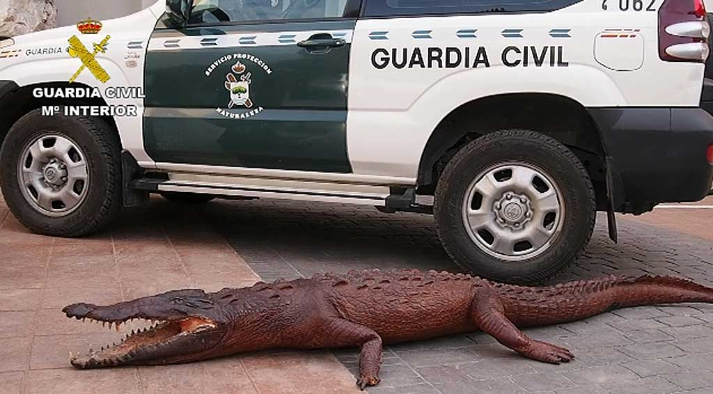 Tráfico de animales en España.