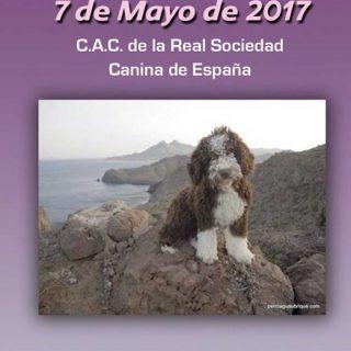 IV Exposición Nacional Canina de Sonseca y Monográfica PDAE.