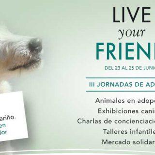 Jornadas para adopción de mascotas en Parque Corredor