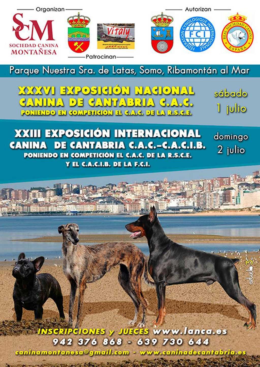 Más de 1.300 perros participarán este fin de semana en varias exposiciones caninas en Cantabria.