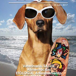 Revista gratis de doogweb julio 2017